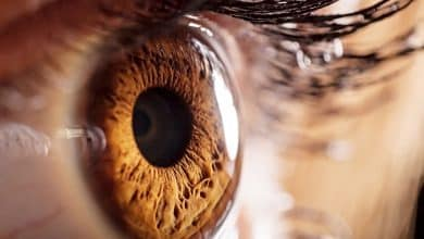 Avance en la investigación sobre glaucoma | Océano Medicina