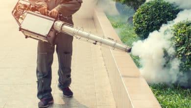 Dengue: ¿La otra pandemia? | Océano Medicina