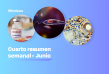 Un resumen de las noticias médicas y científicas de la semana   Océano Medicina