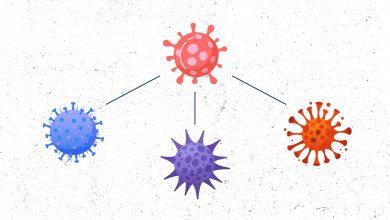 ¿Es posible que ocurra una colisión de virus dentro del marco de la pandemia? | Océano Medicina