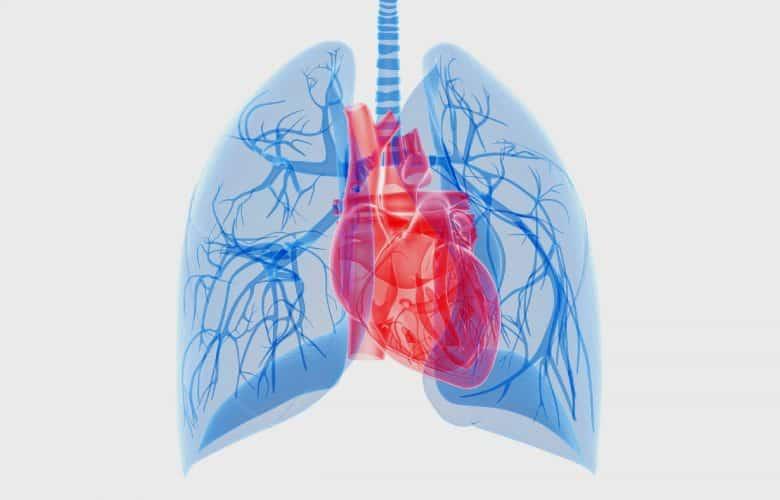 La infección asintomática de COVID-19 puede provocar daños pulmonares y cardíacos | Océano Medicina