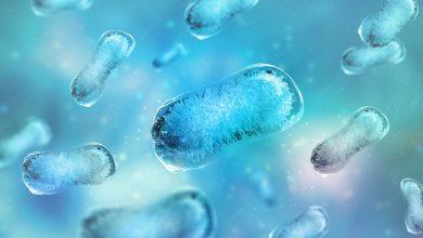 La resistencia antimicrobiana es una amenaza sanitaria creciente y global | Océano Medicina