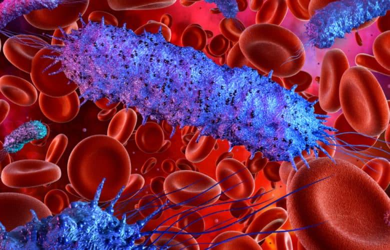 La proteína Gal-1 tiene un rol central en el desarrollo de la sepsis | Océano Medicina