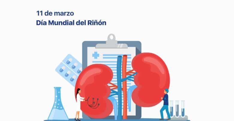 Cómo ayudar al paciente con enfermedad de riñón a mejorar su calidad de vida | Océano Medicina