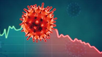 Estudio indica que la cifra de muertes por COVID-19 es mayor que la informada oficialmente   Océano Medicina