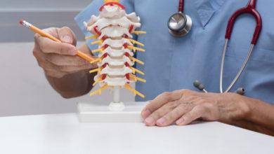 Prometedor proyecto busca desarrollar nuevos tratamientos para la lesión medular | Océano Medicina