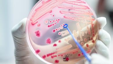 Preocupación por el aumento de bacterias resistentes en Colombia | Océano Medicina