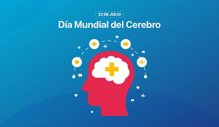 Día Mundial del Cerebro: cómo promover la salud de este órgano vital   Océano Medicina